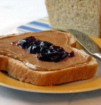 Peanut Butter Jelly Sandwich