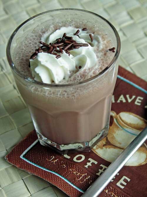 Wendys Chocolate Frostie (Schoko-Shake)