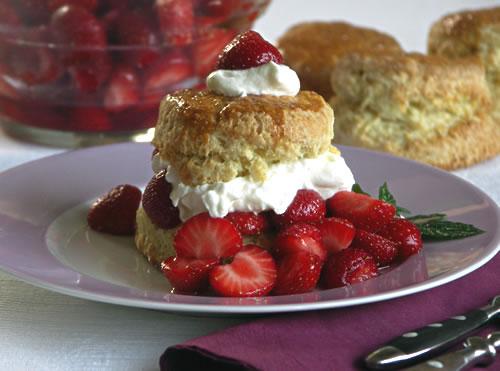 Strawberry Shortcake (Erdbeer-Törtchen mit Sahne)