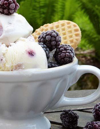 Frozen Joghurt mit Brombeeren