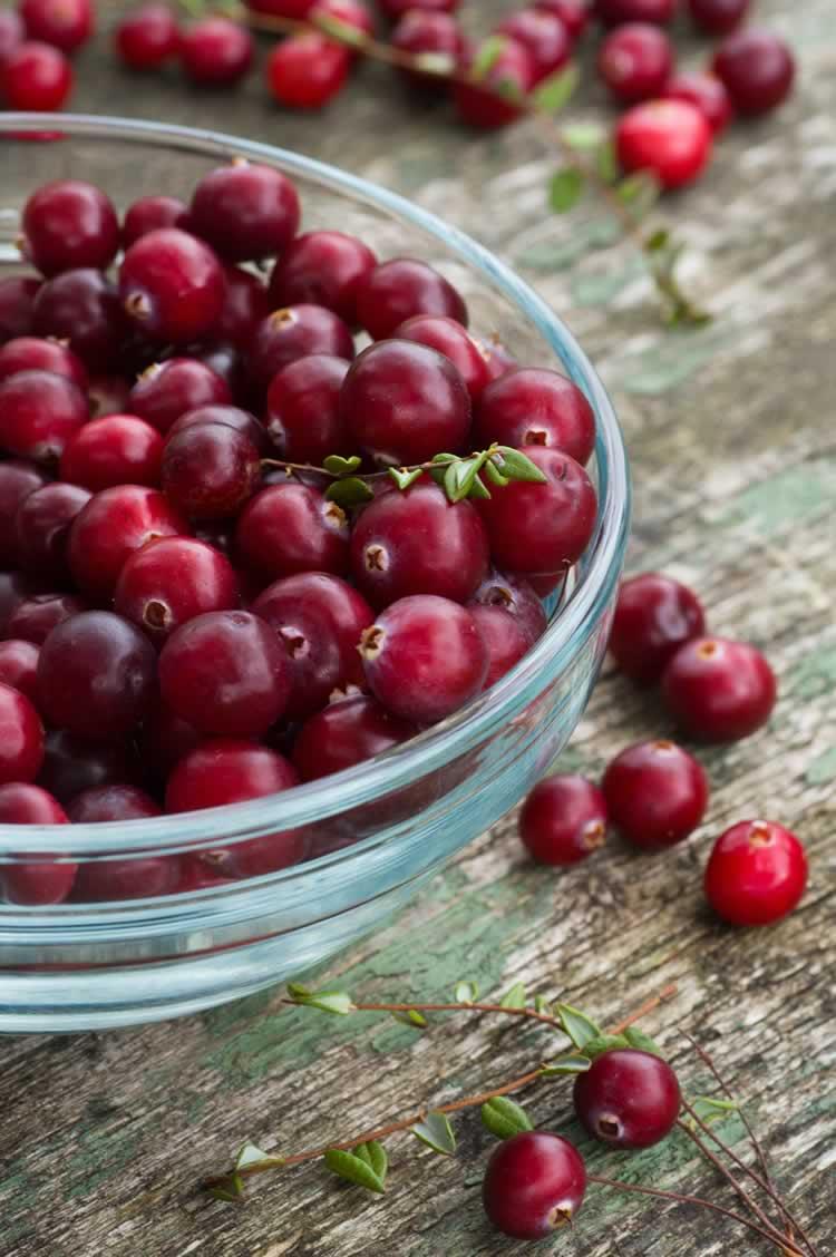 Anbau und Verwendung von Cranberries