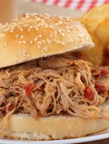 Pulled Pork Sandwich aus den USA