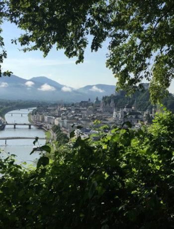 Salzburgansicht
