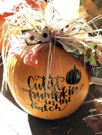 Die besten Pumpkin-Rezepte aus den USA