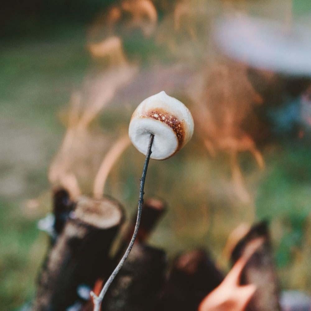 Zubereitung von Smores über dem Lagerfeuer