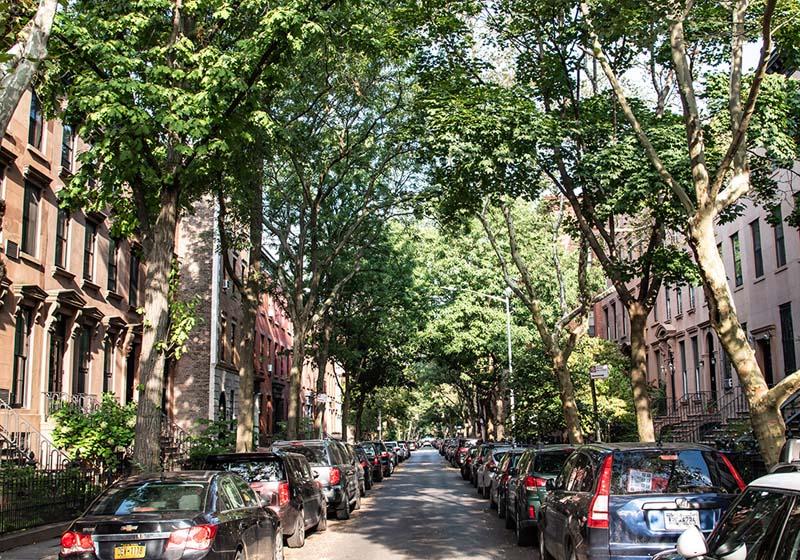 Das Viertel Carroll Gardens in Brooklyn