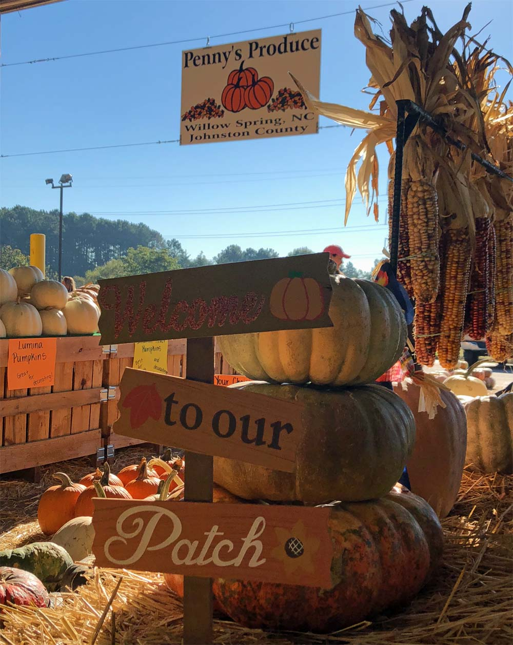 Farmers Market mit Kürbissen in den USA